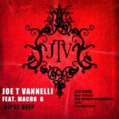 Gipsy Deep by Joe T. Vannelli