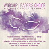 Worship Leader's Choice by Various Artists