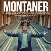Llanto Agradecido (Canto Agradecido (Portuguese Version)) by Ricardo Montaner