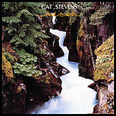 Back to Earth by Yusuf / Cat Stevens