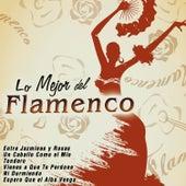 Lo Mejor del Flamenco by Various Artists