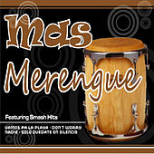 Merengue, Vol. 6 by Various Artists