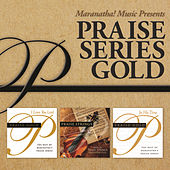 Praise Series Gold by Various Artists