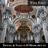 J. S. Bach: Toccata and Fugue in D Minor, BWV 565 by Tzvi Erez