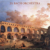 J.S. Bach: Violin Concerto - Vivaldi: the Four Seasons - Albinoni: Adagio - Pachelbel: Canon in D Major - Walter Rinaldi: Adagio for Oboe; Orchestral Works - Mozart: Turkish March - Beethoven: Moonlight Sonata - Schubert: Ave Maria - Vol. IX by Johann Sebastian Bach