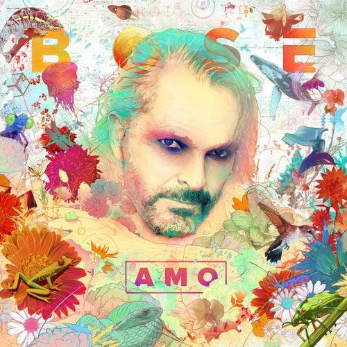 Amo by Miguel Bosé