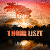 1 Hour Liszt by Various Artists