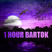 1 Hour Bartok by Various Artists