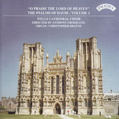 Psalms of David Vol 2: