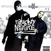 Iicons by Naughty By Nature