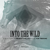 Into the Wild (A Selection of the Best Chillout Music for Trekking) by Various Artists