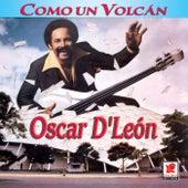 Como Un Volcan by Oscar D'Leon