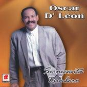 Se Necesita Rumbero by Oscar D'Leon