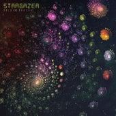 Bold and Brash by Stargazer
