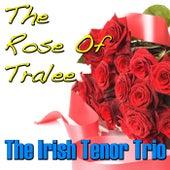 The Rose of Tralee von The Irish Tenors