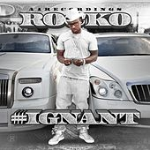 Ignant by Rocko
