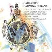 Carl Orff: Carmina Burana by Various Artists