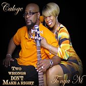 Two Wrongs Don't Make a Right by CaLoge
