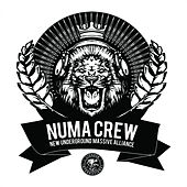 Numa Crew LP Sampler by Numa Crew