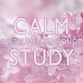 Calm Instrumental Songs for Study by Studying Music