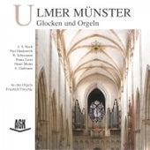 Orgeln in Hamburg - Neun Werke aus 300 Jahren by Various Artists