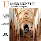 Ulmer Münster - Glocken und Orgeln by Various Artists