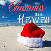 Christmas in Hawaii - 20 Hawaiian Favorites for Holiday Paradise Like Silent Night, Twelve Days of Christmas, Deck the Halls, Ave Maria, White Christmas, Auld Lang Syne, And More by Various Artists