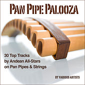 Pan Pipe Palooza (30 Tracks by Andean All-Stars on Pan Pipes & Strings) by Various Artists