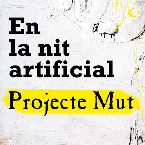 En la Nit Artificial by Projecte Mut