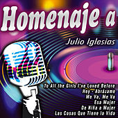 Homenaje a Julio Iglesias by Various Artists