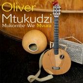 Mukombe We Mvura (Live at Pakare Paye) by Oliver Mtukudzi