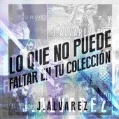 Lo Que No Puede Faltar En Tu Colección by J. Alvarez