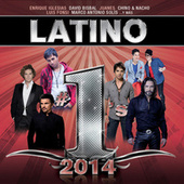 Latino #1´s 2014 by Various Artists