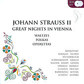 Great Nights In Vienna by Various Artists