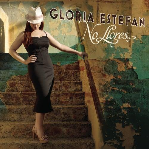 No Llores (Pitbull Remix) by Gloria Estefan