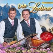 Alpenrosen aus den Dolomiten by Various Artists