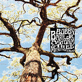 A Storm - A Tree - My Mother's Head by Bobby Bare Jr.