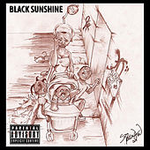Black Sunshine by Various Artists