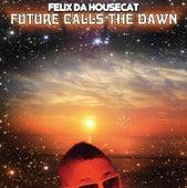 Future Calls The Dawn by Felix Da Housecat