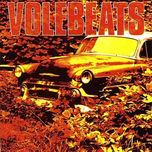 Bittersweet by Volebeats