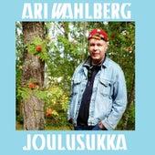 Joulusukka by Ari Wahlberg