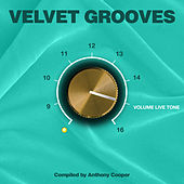 Velvet Grooves Volume Livetone! by Various Artists