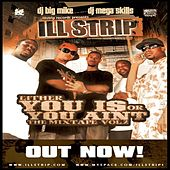 Either You Is Or You Aint Vol. 2 The Mixtape Hosted By Big Mike & Dj Mega Skills by Various Artists