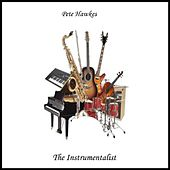 The Instrumentalist by Pete Hawkes
