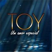 Um Amor Especial by Toy