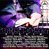Bruck Pocket Riddim by Various Artists