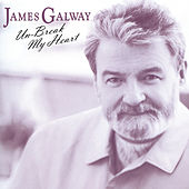 James Galway - Unbreak My Heart von Various Artists