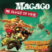 Me Olvide de Vivir by Macaco