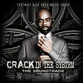 Crack in the System by Various Artists