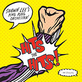 Hits The Hits by Shawn Lee's Ping Pong Orchestra
